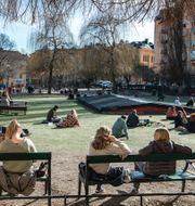 Stockholm under pandemin, Wolodarski TT