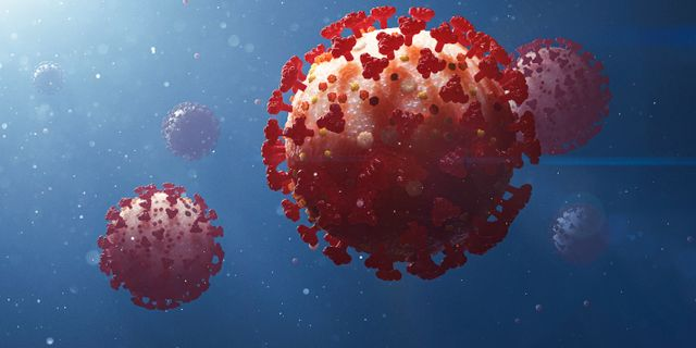 Illustration av det nya coronaviruset. Stefan Hörberg/Rithuset AB / TT NYHETSBYRÅN