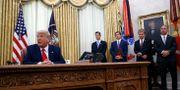 Arkivbild. Trump. Patrick Semansky / TT NYHETSBYRÅN