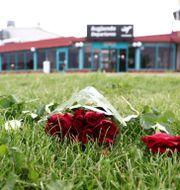 Blommor i närheten av olycksplatsen. Jeppe Gustafsson / TT NYHETSBYRÅN