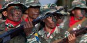 Maduro-lojala styrkor. Arkivb Ariana Cubillos / TT NYHETSBYRÅN/ NTB Scanpix