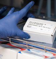 En låda vaccin från Pfizer.  Johan Nilsson/TT / TT NYHETSBYRÅN