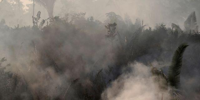 Bild från en brand i Humaita i Brasilien. UESLEI MARCELINO / TT NYHETSBYRÅN