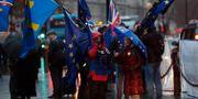 Demonstranter har samlats utanför parlamentshuset i London. Frank Augstein / TT NYHETSBYRÅN