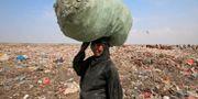 En kvinna bär en säck med återvinning från en soptipp i utkanterna av Hodeida. ABDULJABBAR ZEYAD / TT NYHETSBYRÅN