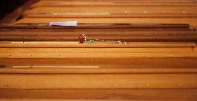 Begravningskistor i Italien. Antonio Calanni / TT NYHETSBYRÅN