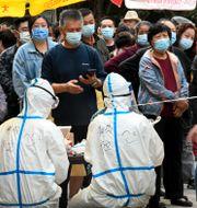 Alla invånare i staden Qingdao ska nu testas. Bild från testerna i veckan. Li Ziheng / TT NYHETSBYRÅN
