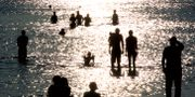 Lomma Beach, förra sommaren. Johan Nilsson / TT / TT NYHETSBYRÅN