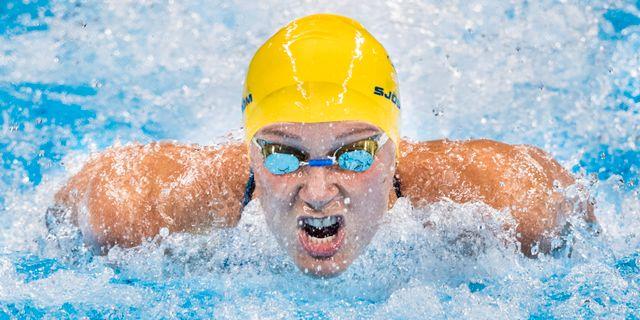 Sarah Sjöström tävlar i finalen på 100 meter fjärilsim i augusti 2016 under OS i Rio de Janeiro. PETTER ARVIDSON / BILDBYRÅN
