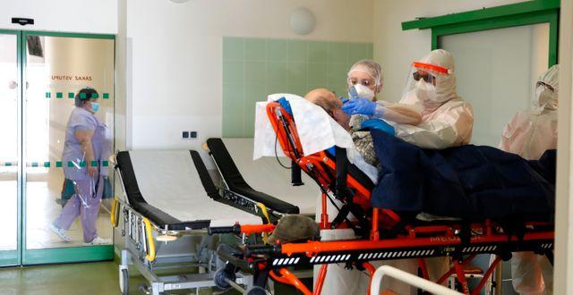 Vård av covid-19 patienter på ett sjukhus i Cheb i Tjeckien  Petr David Josek / TT NYHETSBYRÅN