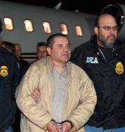 """Joaquin """"El Chapo"""" Guzman. TT NYHETSBYRÅN"""