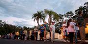 Väljare i Florida 2012. J Pat Carter / TT / NTB Scanpix