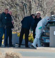 Polisen undersöker ett fordon. Andrew Vaughan / TT NYHETSBYRÅN