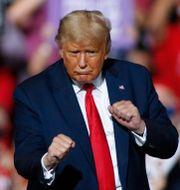 Donald Trump Nell Redmond / TT NYHETSBYRÅN