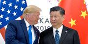 Arkivbild. Donald Trump skakar hand med Xi Jinping under ett möte i Osaka, 29 juni 2019.  Susan Walsh / TT NYHETSBYRÅN
