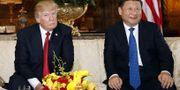 Trump och Kinas ledare Xi Jinping under toppmötet i  Florida i april. TT