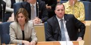 MP-språkröret Isabella Lövin och statsminister Stefan Löfven.  Anders Wiklund/TT / TT NYHETSBYRÅN