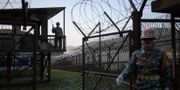 Gränsen vid den demilitariserade zonen. ED JONES / AFP
