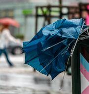 Ett paraply som gett upp i vinden.  Johan Nilsson/TT / TT NYHETSBYRÅN