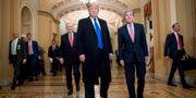 Donald Trump i kongressen. Andrew Harnik / TT NYHETSBYRÅN/ NTB Scanpix