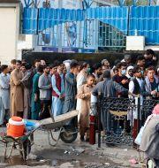 Köer till en bank i Kabul, 30 augusti. Khwaja Tawfiq Sediqi / TT NYHETSBYRÅN