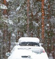 Bil med takbox.  Ruud, Vidar / TT NYHETSBYRÅN