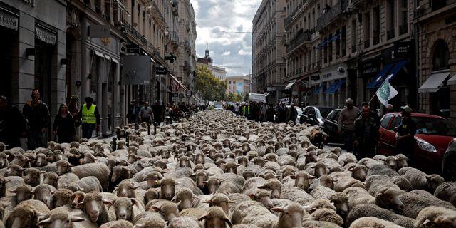 Hundratals får på Lyons gator. Laurent Cipriani / TT / NTB Scanpix