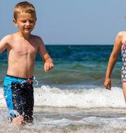 – Vår vision är att inga barn ska drunkna. På sommarsimskolorna får barn lära sig att simma och känna sig trygga i och vid vatten, säger Alexandra Gahnström på Trygg-Hansa. Colourbox