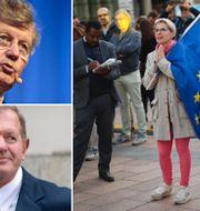 Arkivbilder: Jacob och Marcus Wallenberg, kvinna utanför EU-parlamentet på söndagen. TT