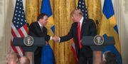 Stefan Löfven och Donald Trump när de möttes i mar Henrik Montgomery/TT / TT NYHETSBYRÅN
