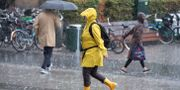 En kvinna i regnrusk/arkiv. Johan Nilsson/TT / TT NYHETSBYRÅN