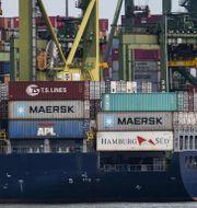 Ett fraktfartyg står lastat i en hamn i Singapore. ROSLAN RAHMAN / TT NYHETSBYRÅN