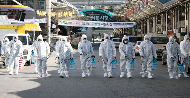 Hälsoarbetare i Sydkorea. Lim Hwa-young / TT NYHETSBYRÅN