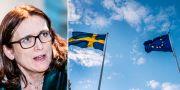 Malmström, illustrationsbild TT