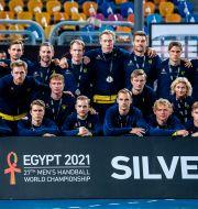 Svenska laget. MATHIAS BERGELD / BILDBYRÅN