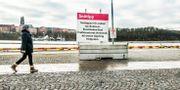 Snöfattigt i Stockholm. Tomas Oneborg/SvD/TT / TT NYHETSBYRÅN