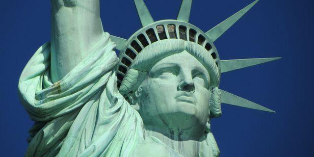 """""""Frihetsgudinnegrön"""" har blivit New Yorks signaturfärg. Pixabay/Pexels"""