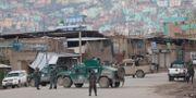 Afghansk polis utanför templet på onsdagen. Rahmat Gul / TT NYHETSBYRÅN