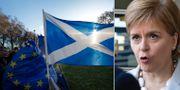 Skottlands ledare Nicola Sturgeon. AP