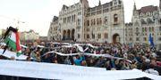 Arkivbild: Demonstrationer till stöd för universitetet utanför parlamentsbyggnaden i Budapest förra året. Zoltan Balogh / TT / NTB Scanpix