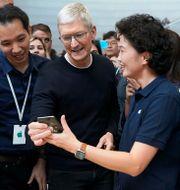 Arkivbild: Tim Cook i samband med lanseringen av Iphone 11.  Tony Avelar / TT NYHETSBYRÅN