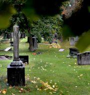Brottet ägde rum på Nya begravningsplatsen i Solna. PONTUS LUNDAHL / TT / TT NYHETSBYRÅN