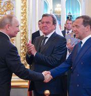 Vladimir Putin skakar hand med  Dmitrij Medvedev.  SPUTNIK / TT NYHETSBYRÅN