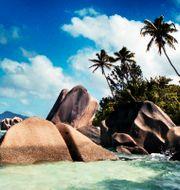 Seychellerna. Yvonne Åsell / SvD / TT / TT NYHETSBYRÅN