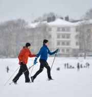 Skidåkare i Stockholm. Anders Wiklund/TT / TT NYHETSBYRÅN