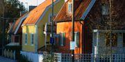 Villor i närheten av Enskede Gård. HASSE HOLMBERG / TT NYHETSBYRÅN