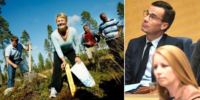 Alliansledarna hemma hos Maud Olofsson i Högfors 2004/Ulf Kristersson och Annie Lööf i höstas. TT