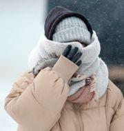 Påpälsad kvinna som täcker ansiktet mot vinden.  Charles Rex Arbogast / TT NYHETSBYRÅN