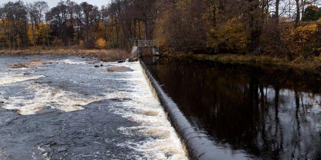 Hertings kraftstation i Ätran Thomas Johansson/TT / TT NYHETSBYRÅN