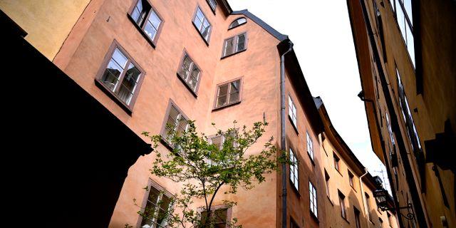 Janerik Henrsson/TT / TT NYHETSBYRÅN